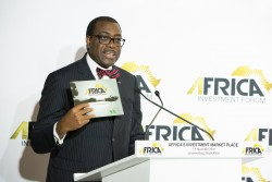 11 Africa Investment Forum endorsed as a game changer for financing Africa's infrastructure developm